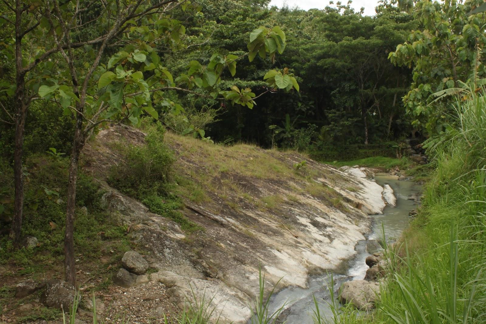 Hutan Kecil Curug Bayat Ngulik Yuk Bro Letak Tepatnya Berbatasan