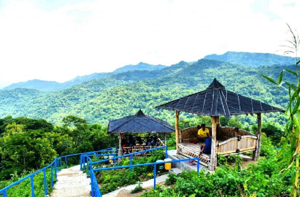 Green Village Gedangsari Keindahan Permadani Hijau Yogyakarta Puncak Desa Kab