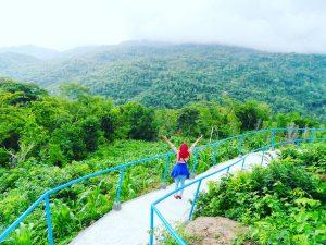 Green Village Gedangsari Tempat Wisata Jogja Cocok Berburu Desa Hijau