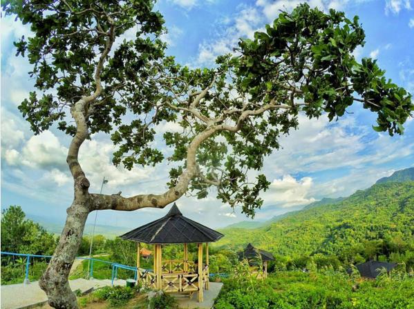 Info Lokasi Rute Menuju Green Village Gedangsari Gunung Kidul Salah