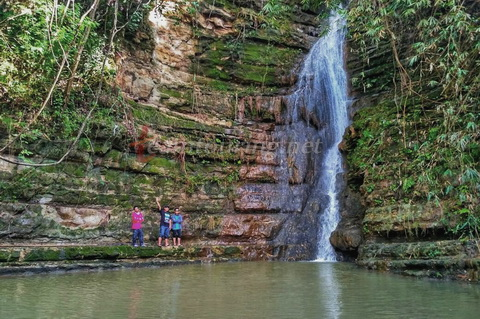 Air Terjun Sendang Tuban Tertinggi Hutan Wanagama Gunungkidul Lokasi Berada