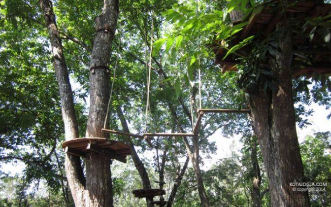 Hutan Wanagama Gunungkidul Kotajogja Pendopo Kab