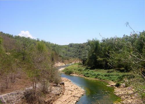 Hutan Wanagama Gunungkidul Pathuk Kab