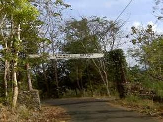 Hutan Wanagama Yogyakarta Jogja Jogjaland Net 4 Kab Gunungkidul