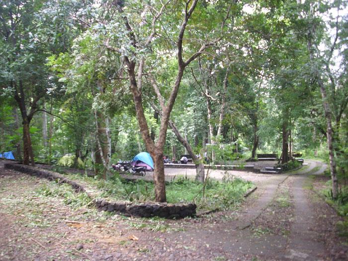 Hutan Wisata Wanagama Banaran Playen Gunungkidul Bagian 1 Wadiyo Sblog