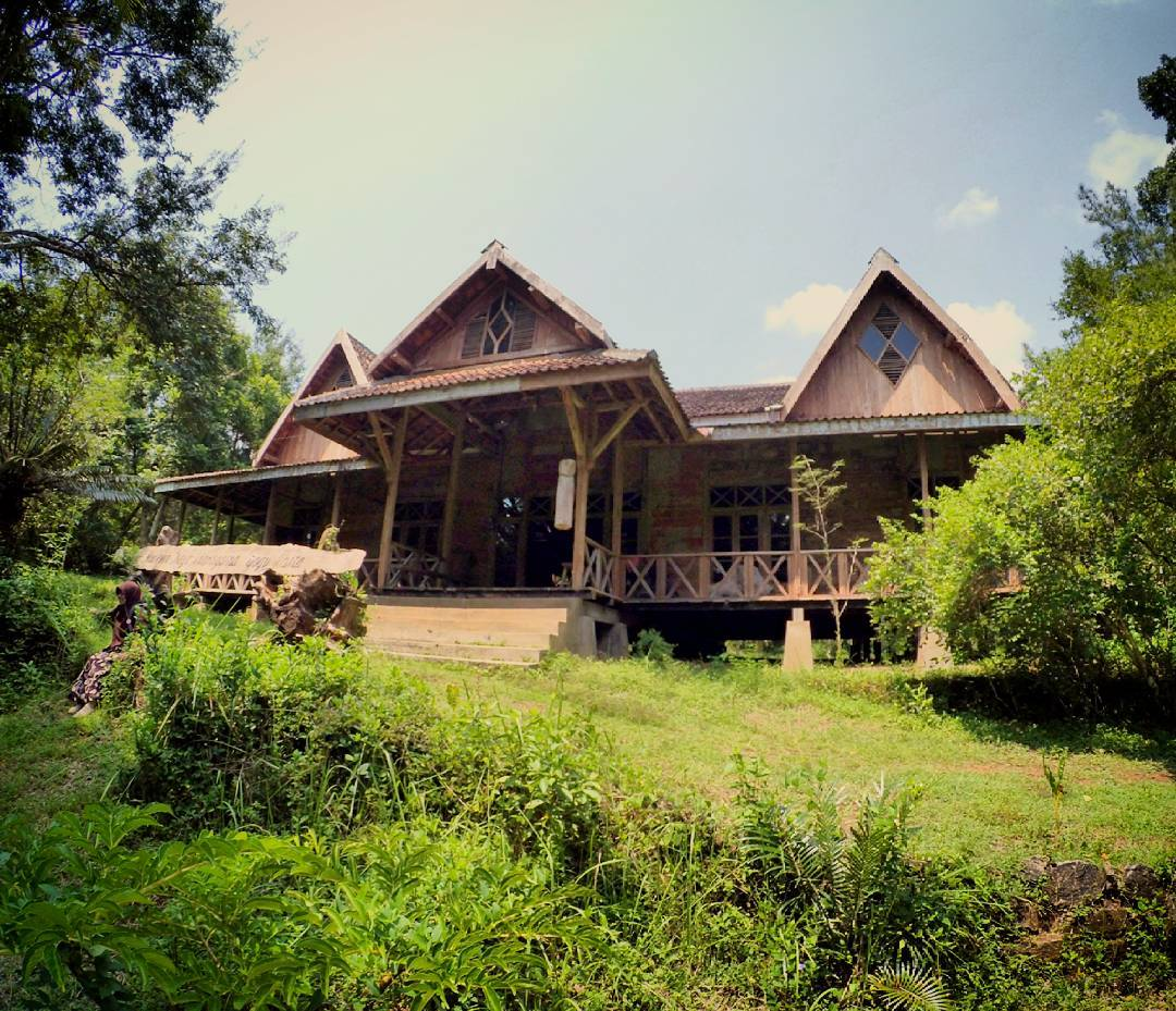Kunjung Museum Hutan Kayu Wanagama Coba Kab Gunungkidul