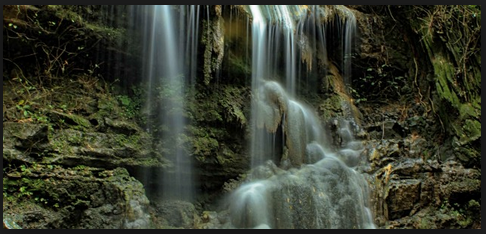 Mengekspose Wisata Sendang Tahunan Hutan Wanagama Gunungkidul Kab