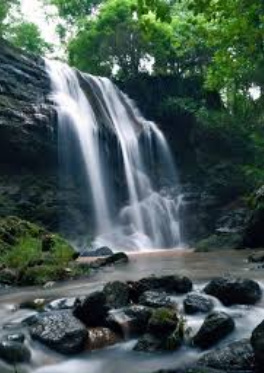 Mengekspose Wisata Sendang Tahunan Hutan Wanagama Gunungkidul Keindahan Kab