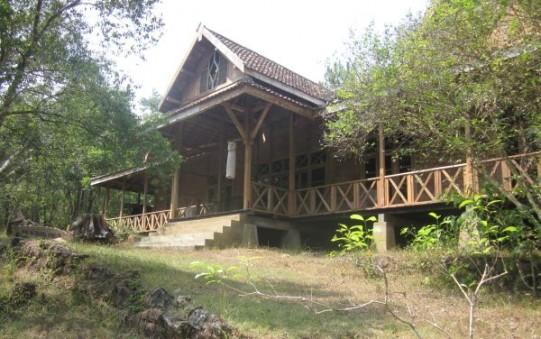 Museum Kayu Wanagama Wisata Yogyakarta Mempelajari Hasil Alam Pepohonan Indonesia
