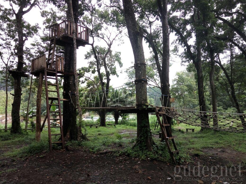 Museum Kayu Wanagama Yogyakarta Yogya Gudegnet Hutan Kab Gunungkidul