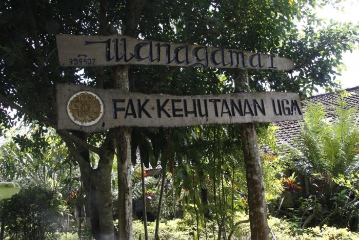 Wanagama Contoh Kemampuan Anak Bangsa Kelola Hutan Villagerspost Gerbang Masuk