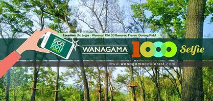 Wanagama Educational Forest 1000 Selfie Hutan Kab Gunungkidul