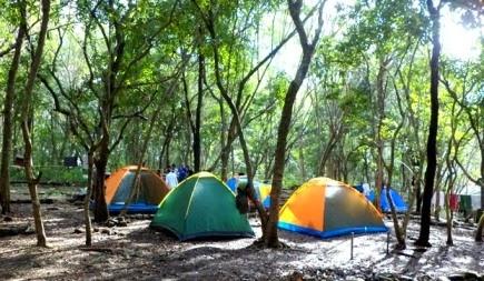 Wisata Hutan Wanagama Gunung Kidul Jogjakarta Wongcrewchild Bumi Perkemahan Fasilitas