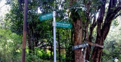 Wisata Hutan Wanagama Gunung Kidul Jogjakarta Wongcrewchild Hasil Reboisasi Kab