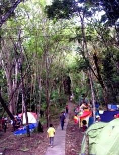 Wisata Hutan Wanagama Gunung Kidul Jogjakarta Wongcrewchild Letak Berada Desa