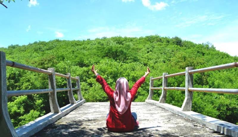 Asik Berpetualangan Menguliti Hutan Wanagama Gunungkidul Tegalarum Adventure Park Kab