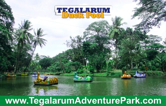 Bermain Bertualang Wisata Tegalarum Adventure Park Yogyakarta Gambar Kab Gunungkidul