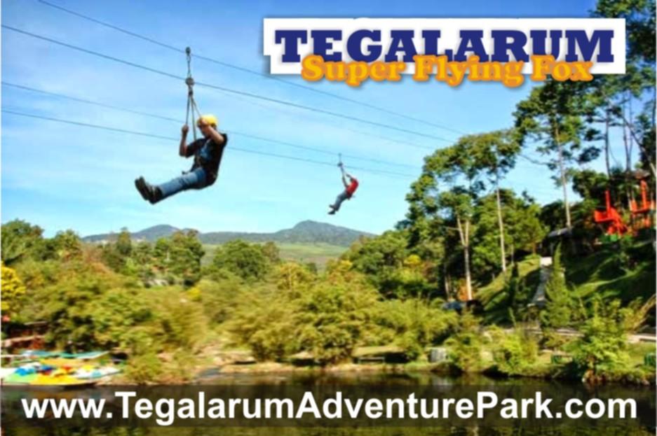 Tegalarum Super Flying Fox Wisata Wonosari Adventure Park Kab Gunungkidul
