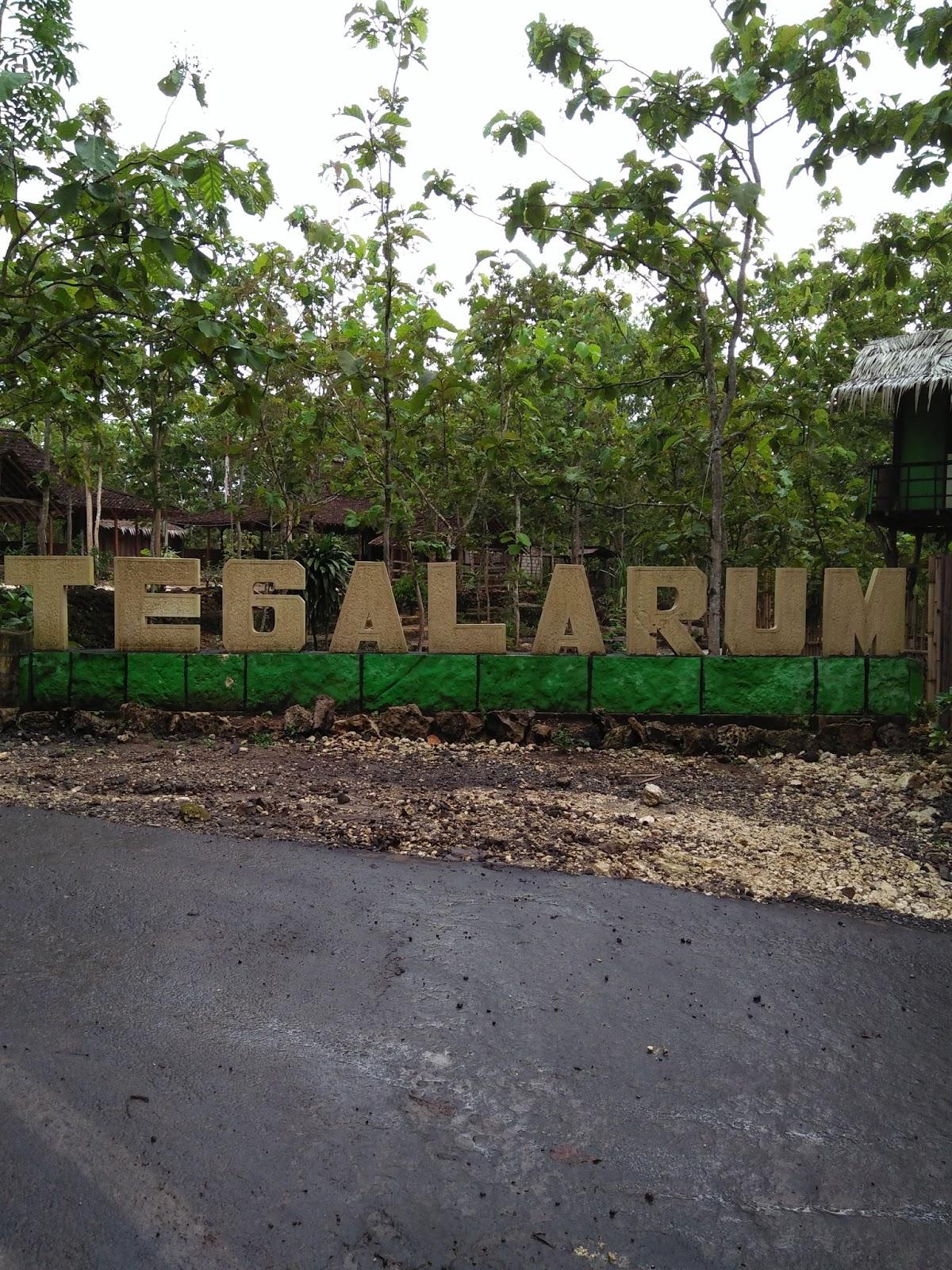 Wisata Tegalarum Adventure Park Bakpia Mutiara Jogja Kab Gunungkidul