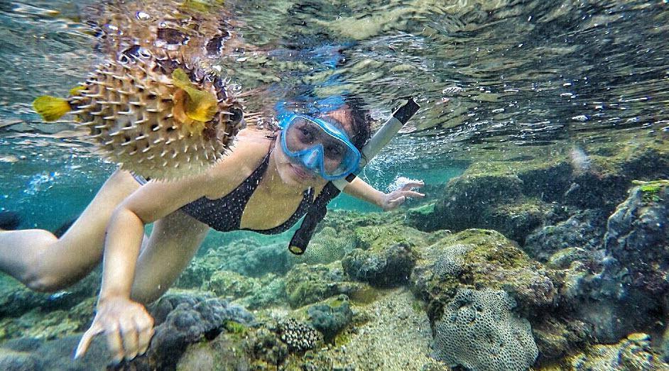 Snorkeling Jogja Rental Mobil Tempat Wisata Vacationpassage Watu Giring Kab