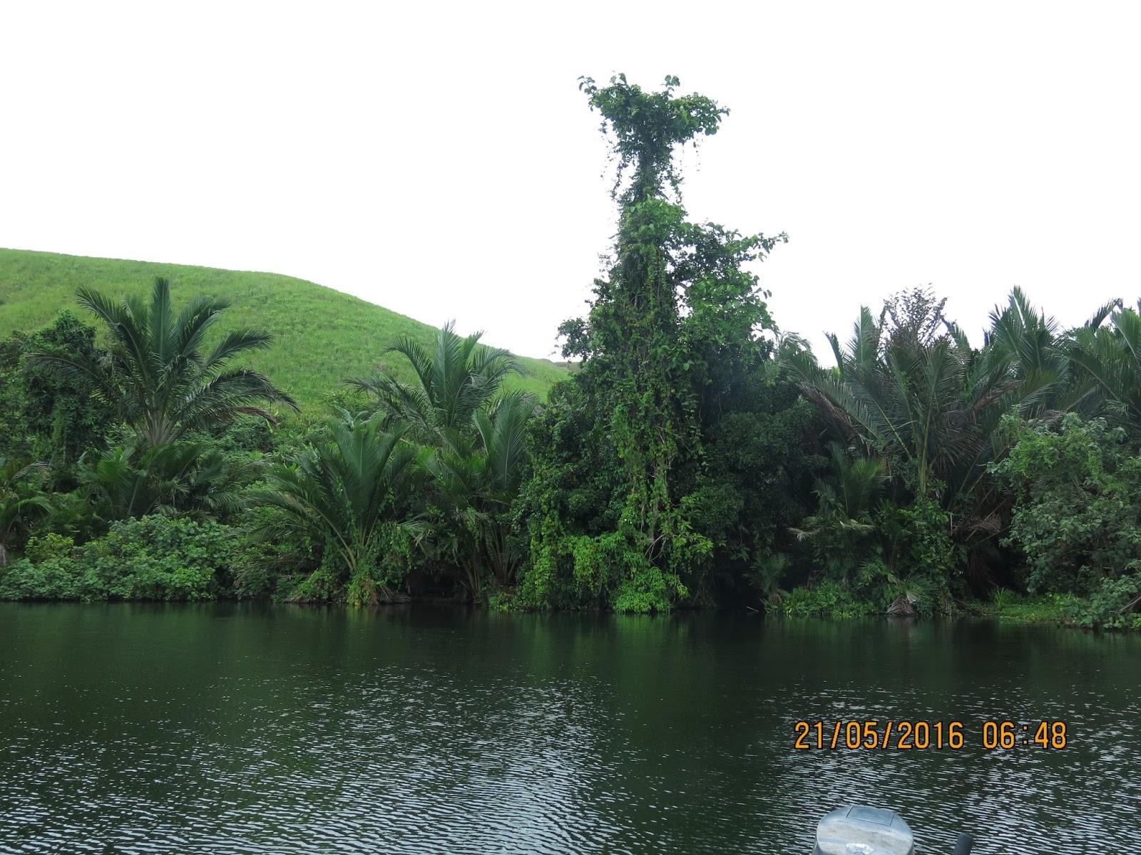 Memancing Jayapura 01 Danau Sentani Luas Kolam Renang Tirta Mandala