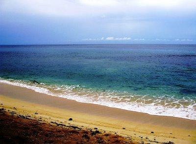 Jelajah Lintas Port Numbay Papua Pesona Pantai Bas Jayapura Indahnya