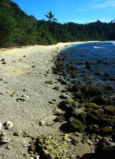 Pantai Pasir Putih Holtekamp Keindahan Alam Papua Jayapura Hotelkamp Kab
