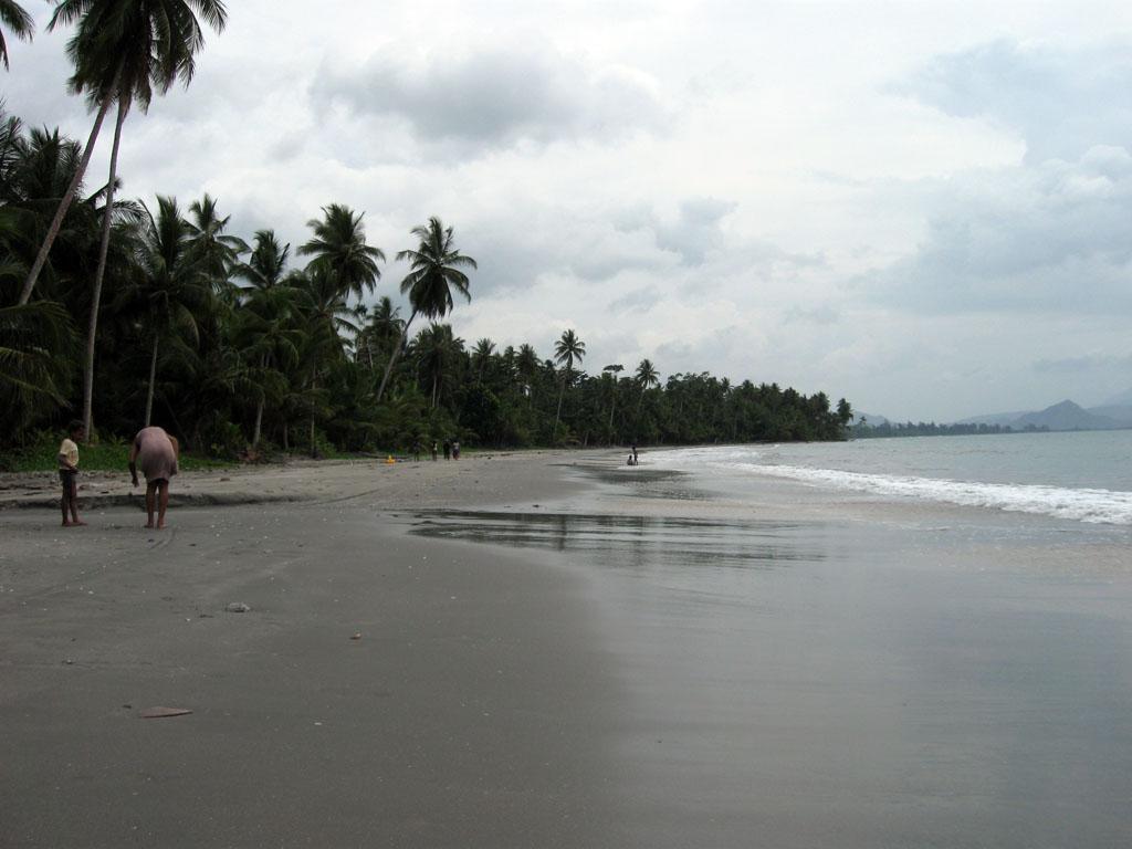 Tempat Wisata Jayapura Wajib Dikunjungi Wisatamy Holtekamp Pantai Hotelkamp Kab