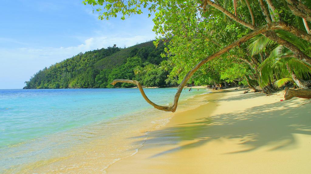 5 Tempat Wisata Pantai Cantik Papua Harlem Pasir 6 Kab