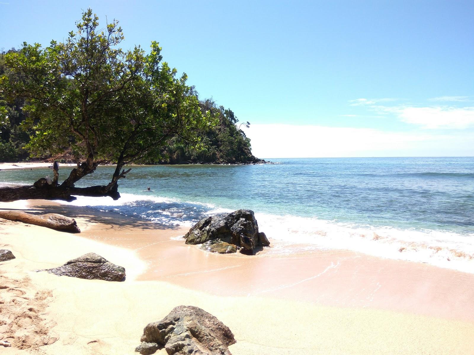 Bawah Kolong Langit Port Numbay Teratai Api Pantai Pasir Vi