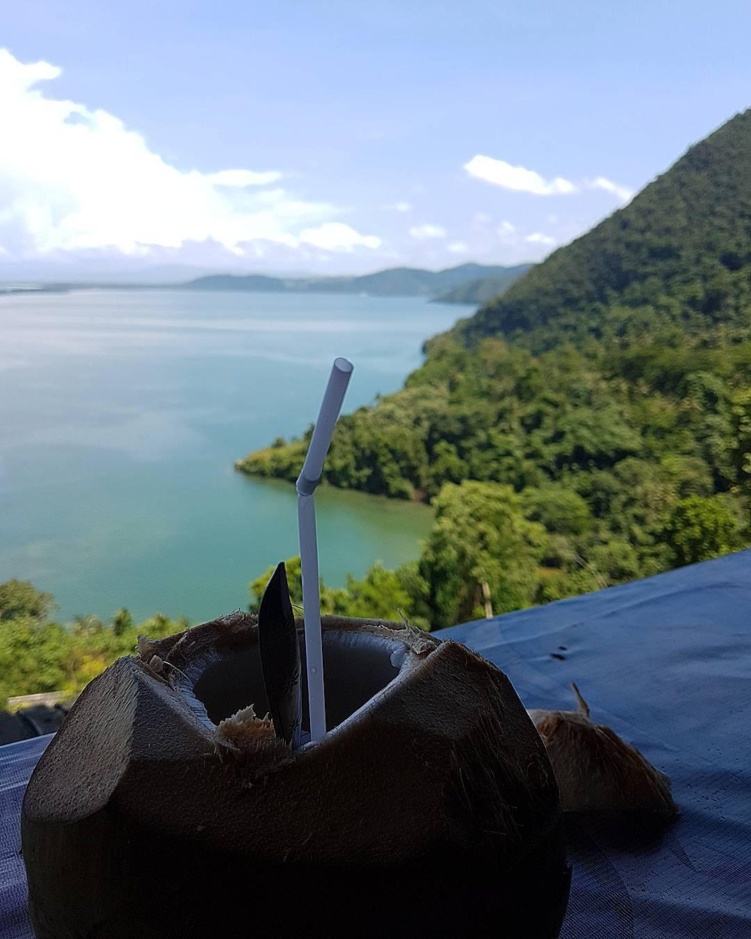 Wisata Papua Jayapura Menikmati Kelapa Muda Sambil Memandangi View Teluk