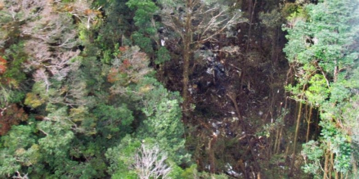 Bangkai Pesawat Trigana Air Ditemukan Diantara Pepohonan Hutan Serpihan Tampak
