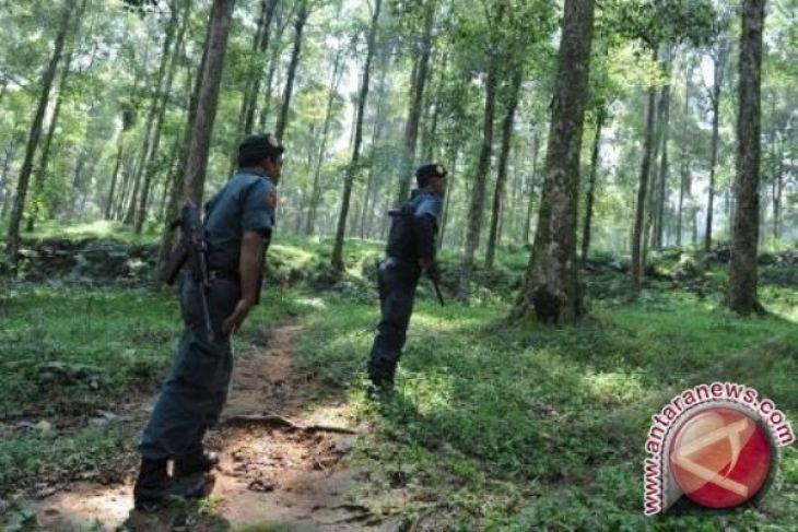 Pemkot Jayapura Libatkan Tni Polri Operasi Hutan Antara News Pesawat