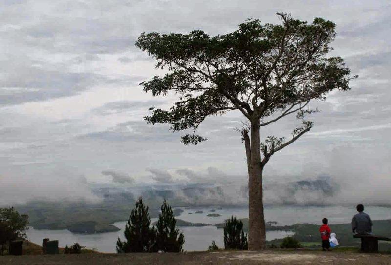 Jayapura Portal Berita Bisnis Wisata Kembangkan Bahari Teluk Berharap Investor