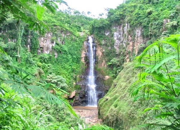 Eloknya 40 Tempat Wisata Kota Bukit Jember Jawa Timur Trip