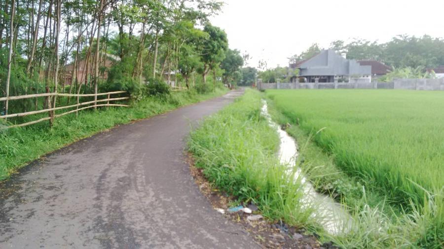 Tanah Dijual Dekat Pemandian Kimo Jember Rumah Kota Lain Kab
