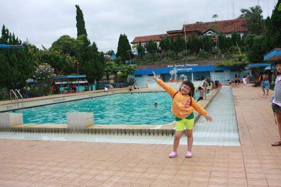 Rembangan Hotel Restaurant Updated 2018 Reviews Jember Kolam Renang Green