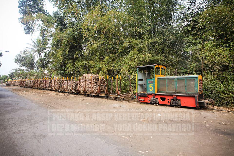 Decauville Line Pabrik Gula Jalan Baja 12003325 1138509742830691 772990449846719846 Loko