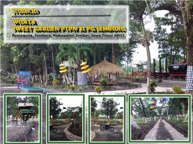 Wisata Semboro Sweet Garden Ptpn Xi Pg Jember Jawa Timur