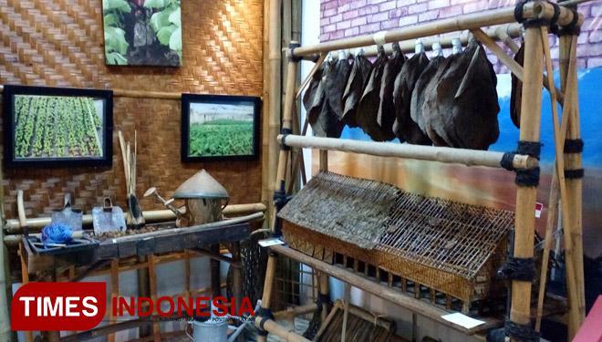 Museum Tembakau Jember Etalase Indonesia Kab