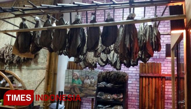 Museum Tembakau Jember Etalase Indonesia Times 3 Jpg Kab