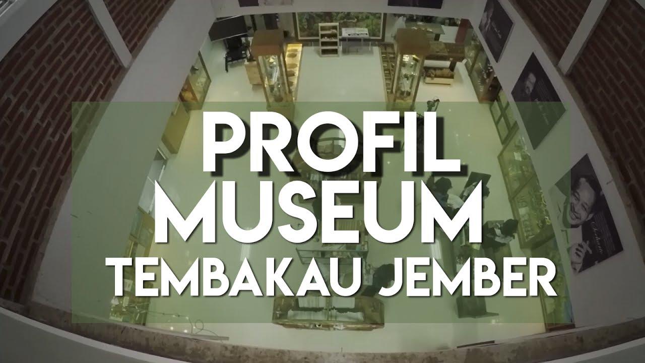 Profile Museum Tembakau Jember Youtube Kab