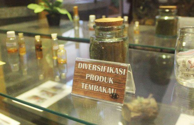 Tingkatkan Nilai Tambah Perlu Diversifikasi Produk Tembakau Turunan Dipajang Museum