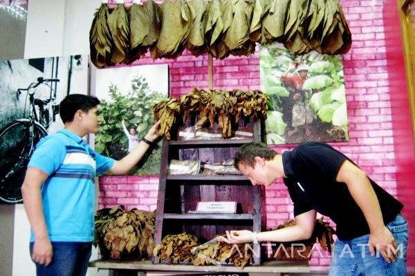 Yuk Mengenal Tembakau Indonesia Perkebunannews Museum Jember Kab