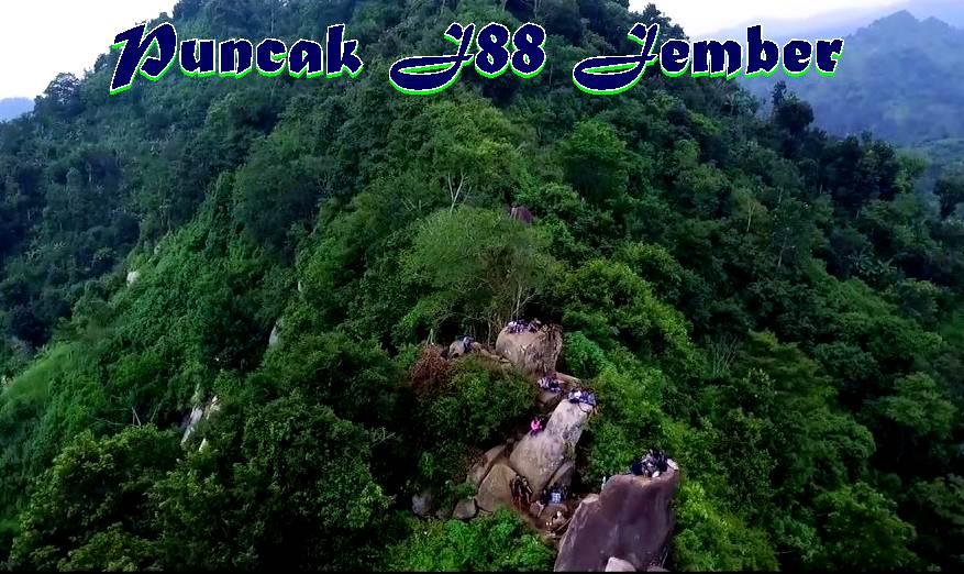 Pesona Puncak Bukit J88 Jelbug Jember Tempat Wisata Nongai Waterboom