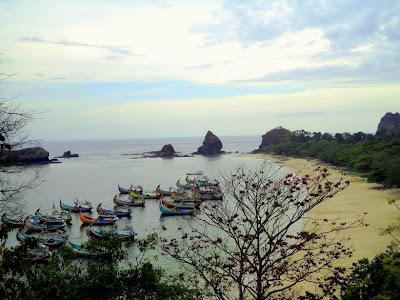 Pantai Papuma Jember Jawa Timur Harga Tiket Masuk 2018 Peta