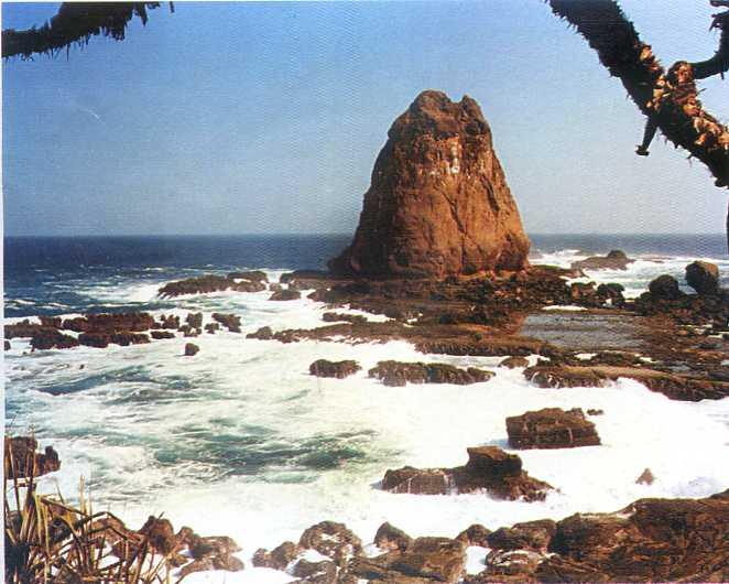 Pantai Watu Ulo Kabupaten Jember Wisata Jawatimuran Papuma Kab