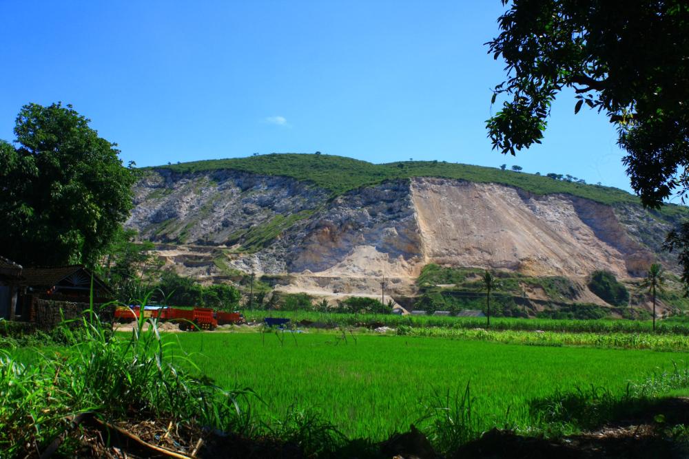 Pantai Puger Jember Dain Institute Bukit Tambang Batu Gamping Kab