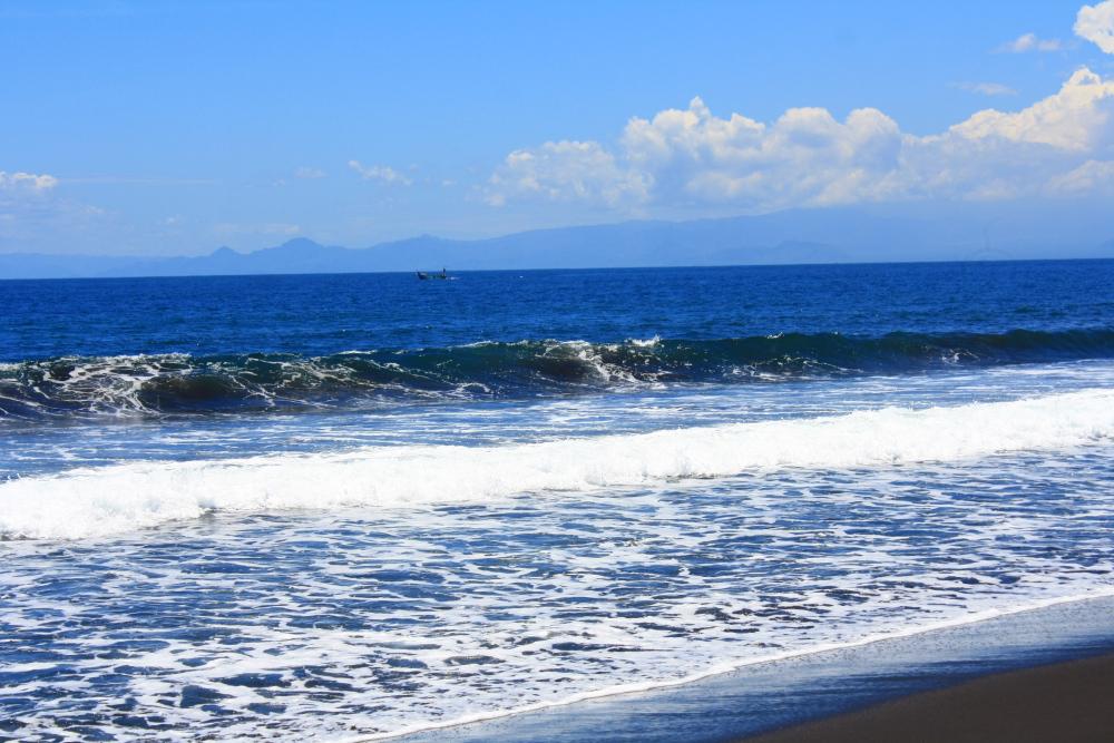 Pantai Puger Jember Dain Institute Ombak Kab
