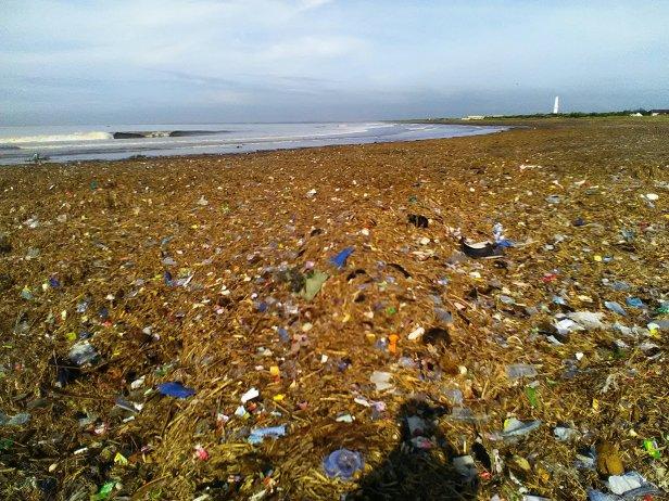 Pantai Puger Penuh Sampah Kata Aktivis Lingkungan Bagus Menjadi Agenda